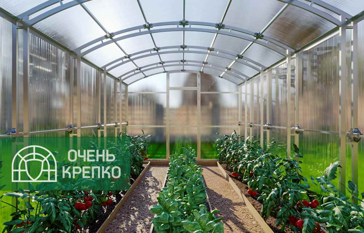 теплица из поликарбоната в новгороде купить